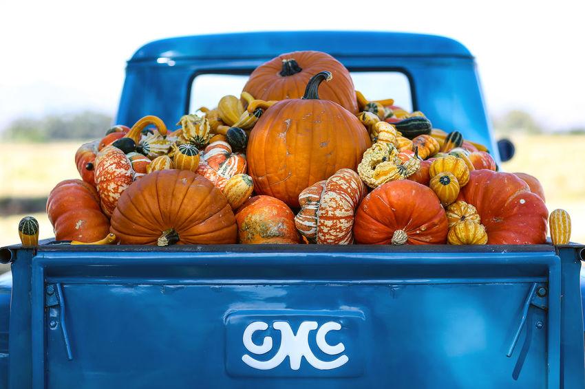 Pumpkins, truck load of pumpkins! Close-up Day Food Food And Drink No People Off To Market Outdoors Pumpkin Pumpkins Road Side Squash Truck Truck Load