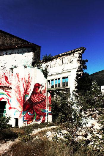 Murete al interior de la antigua fabrica de telas en Nogales, Veracruz Old Factory Architecture Blue Building Exterior Built Structure Clear Sky No People Old Building  Outdoors