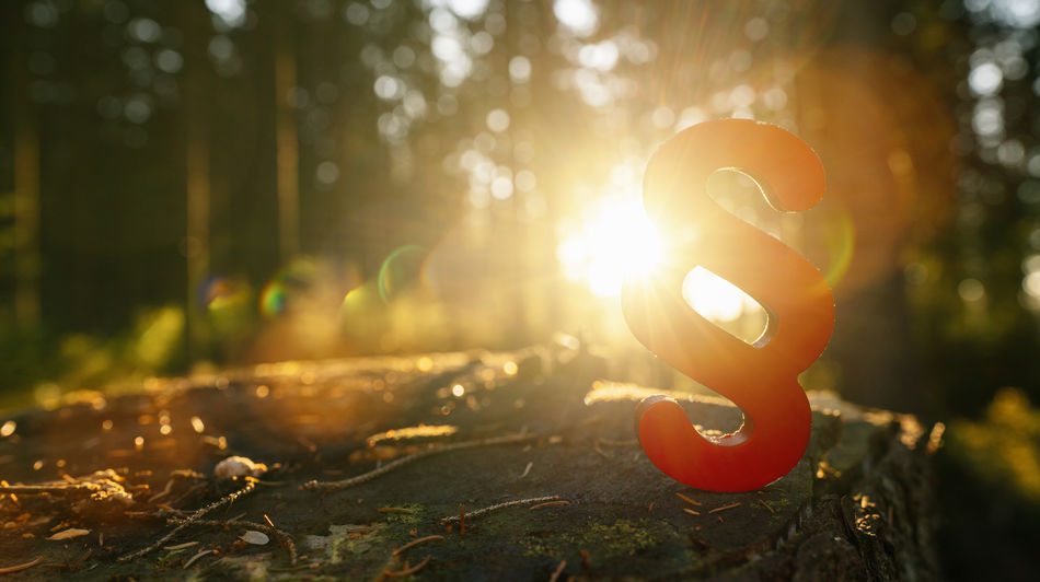 paragraph symbol of Law and Justice in to the forest sun on a tree trunk, copyspace for your individual text. Woods Verdict Tree Trunk Tree Tranquility Symbol Sunset Sunrise Sunlight Sunbeam Structure Sky Sign Shadow Selective Focus Rule Of Law Regulation Prosecutor Process Plant Paragraph Symbol Paragraph Outdoors Order Orange Color Notary No People Nature Method Listing Light Lens Flare Lawyer Law Land Justitia Justice Jury Jurisdiction Judicial Judgment Judge Imprint Idea Hope Header Growth Glowing Gavel Forest Food Focus On Foreground Field Dsgvo Decision Day Criminal Court Copy Space Concrete Concept Code Of Law Close-up Civil Right Business Blue Sky Beauty In Nature Banner Advocate