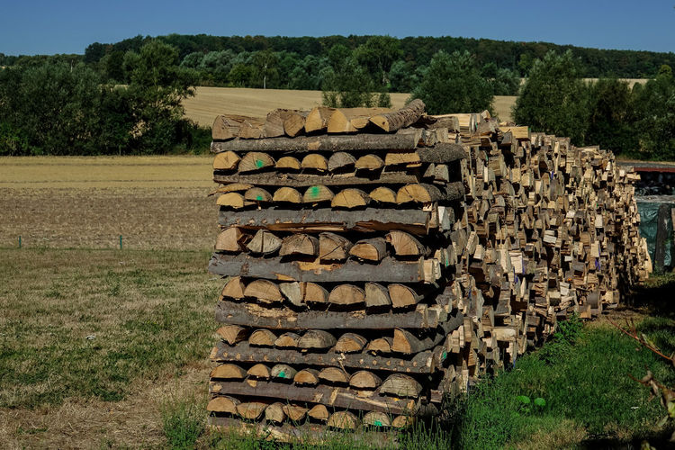 Brennholz Stapel Kaminholz Abundance Day Deforestation Field Firewood Forest Land Landscape Large Group Of Objects Log Lumber Industry Nature No People Outdoors Plant Stack Timber Tree Wood Wood - Material Woodpile
