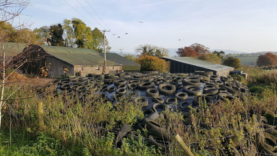 Barn Day Farm Farmyard Silage Silage Heap Silage Making Tyres Weighed Down