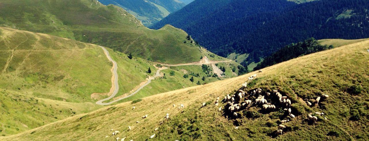 Portdebales Pyrenees