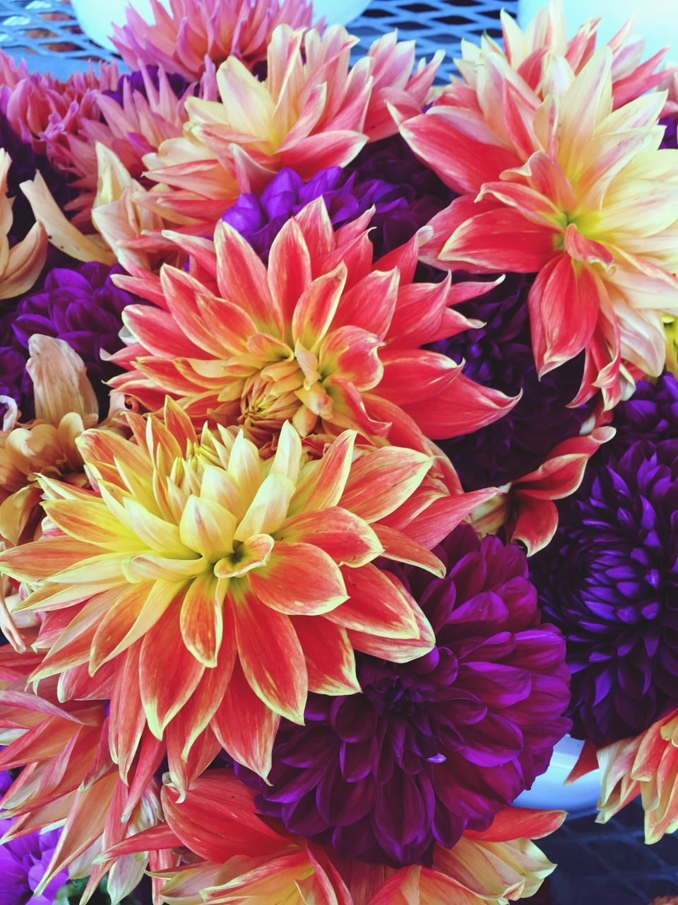 flower, petal, fragility, beauty in nature, flower head, freshness, nature, no people, growth, close-up, flower market, chrysanthemum, bouquet, dahlia, retail, day, plant, flower shop, choice, outdoors, multi colored, blooming