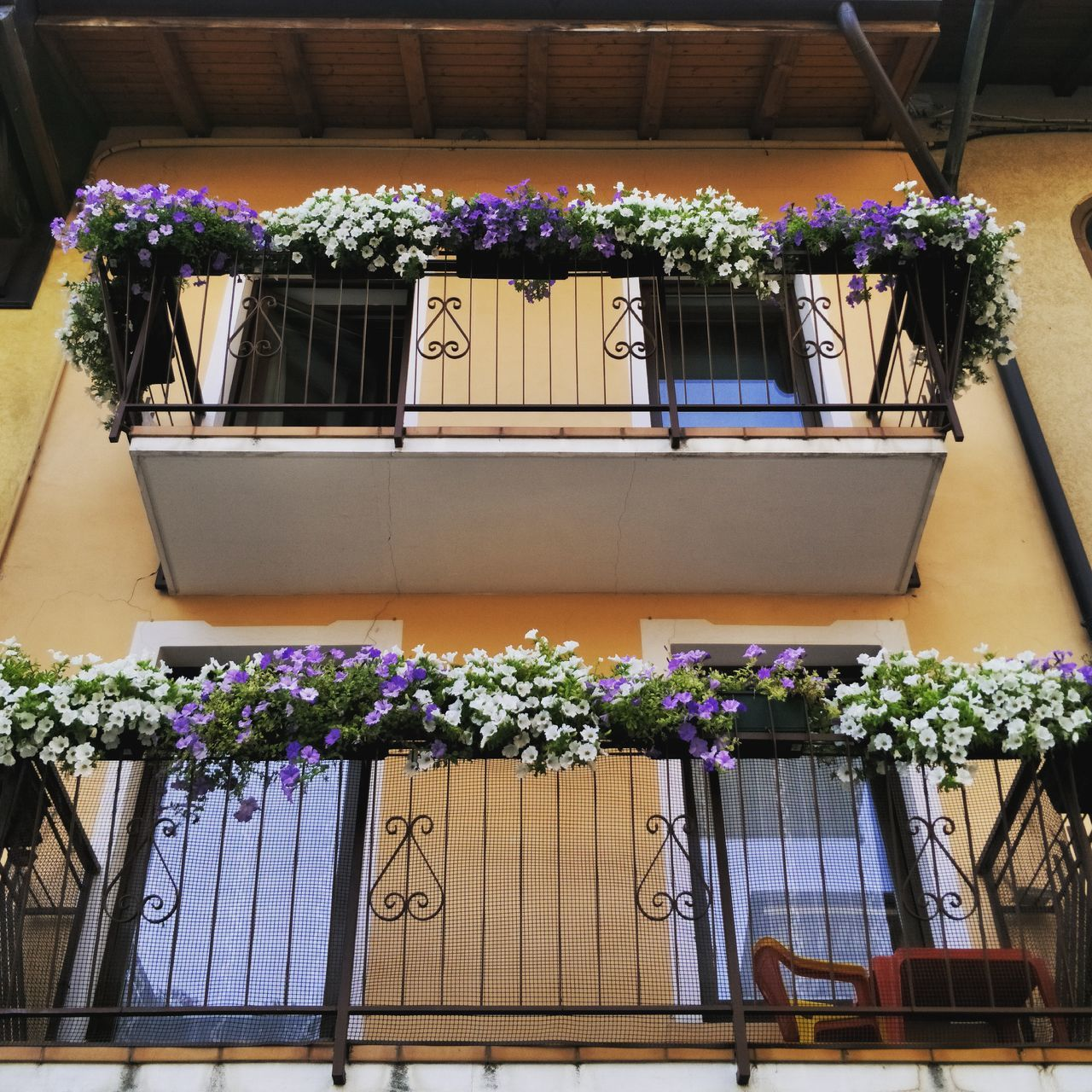 flowering plant, flower, plant, potted plant, flower pot, window box, nature, no people, freshness, growth, architecture, day, vulnerability, fragility, balcony, beauty in nature, seat, building exterior, built structure, chair, outdoors, purple, flower arrangement