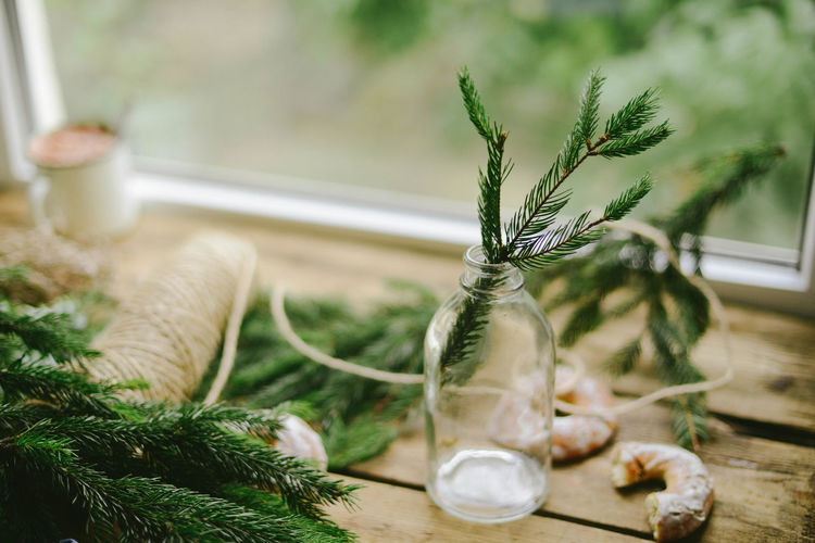 High Angle View Of Pine Needles On Table By Window
