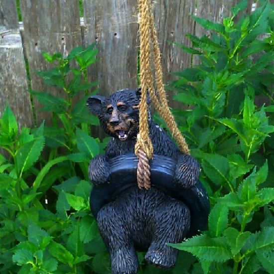 Garden grizzly TheBear Ropeswing  Familystory