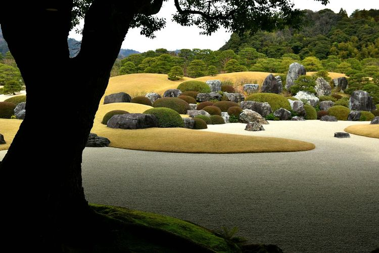 Rocks and plants at adachi museum of art