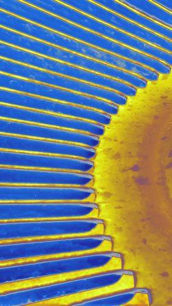 Foundobject Pleasingtomyeyes Pattern Yellowandblue Geometry In Things Radial Composition
