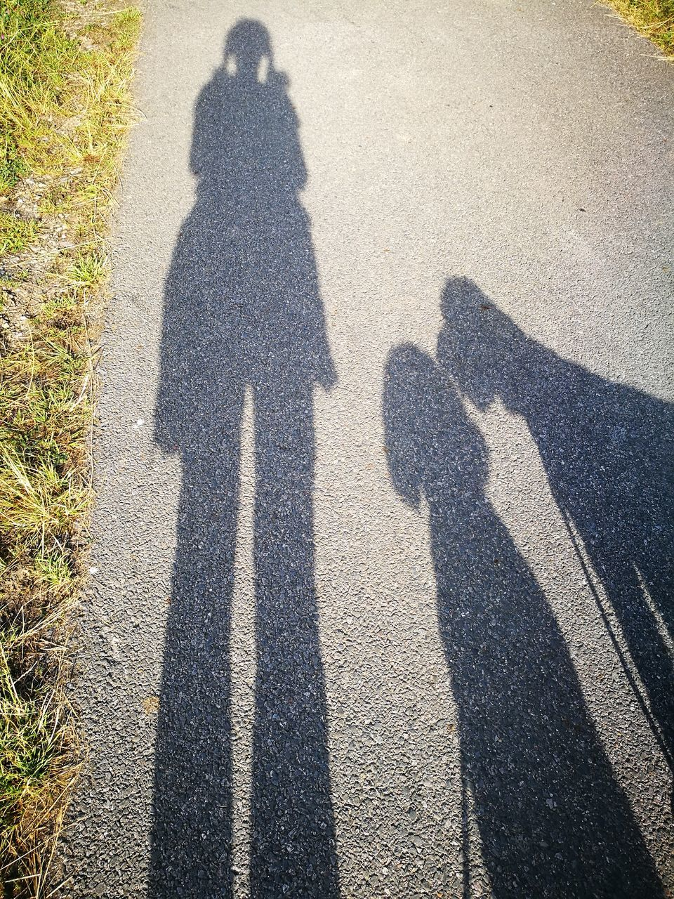 shadow, focus on shadow, sunlight, real people, day, togetherness, high angle view, men, outdoors, lifestyles, women, grass, nature, people