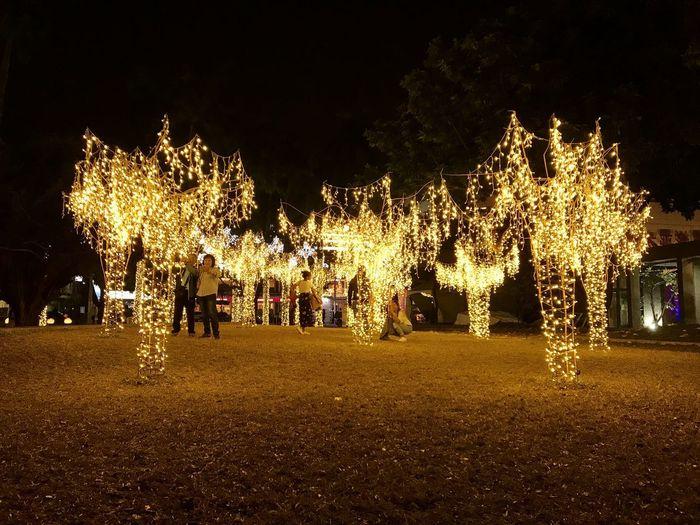 Illuminated christmas lights on street at night