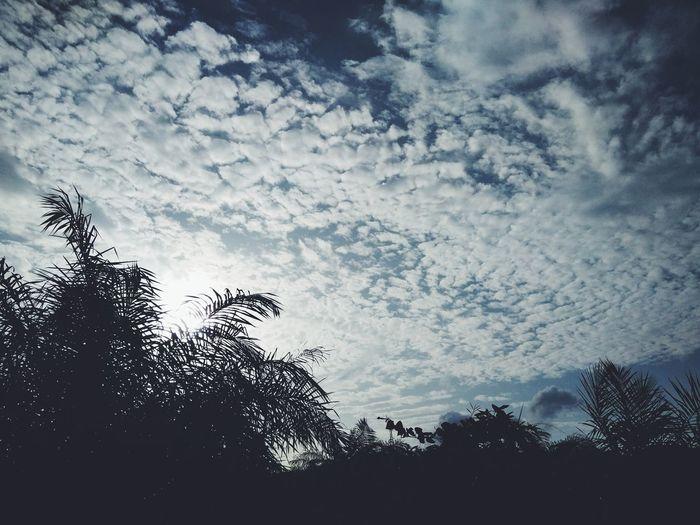 ท้องฟ้าวันนี้