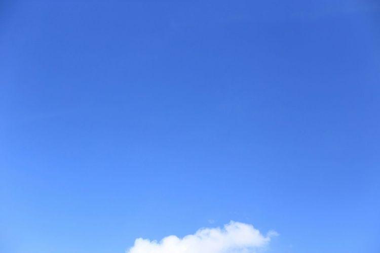 Cobalt Blue By Motorola Summer Blue Sky and Little Cloud