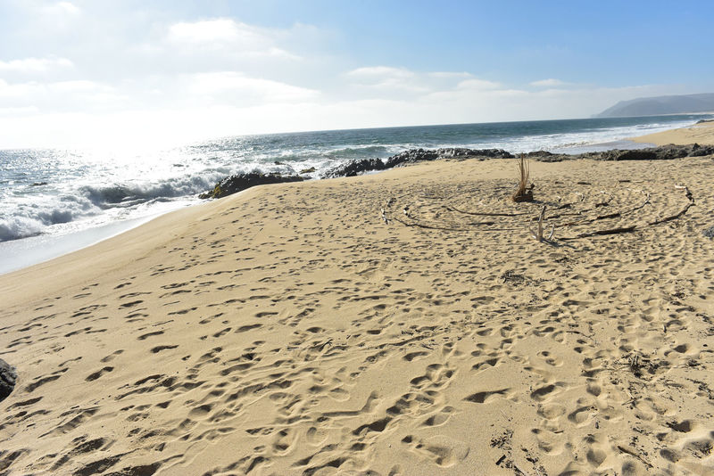 circle labyrinth laid out in driftwood sticks on the seashore sand beach of Baja California Sur, Mexico Baja California Sur Labyrinth Maze Seashore Walking The Labrynth Beach Beach Day Day Handmade Land Nature Sand Sea Spiritual Tranquility Water