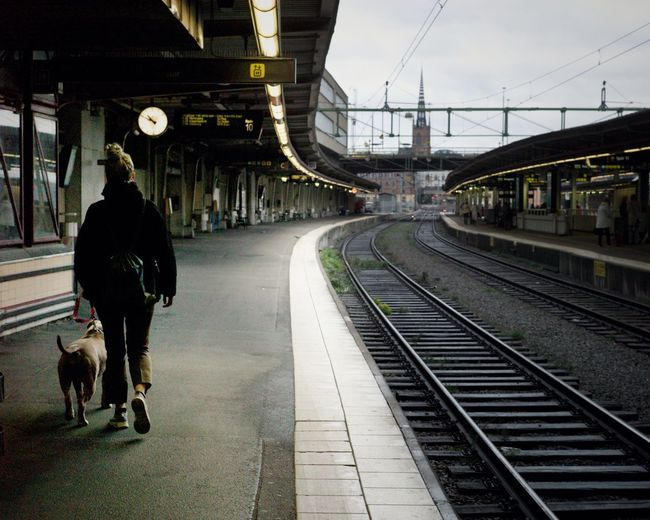 Stockholm Central Station Streetphotography Dog Rail Transportation Transportation Track Railroad Track Mode Of Transportation Rear View Railroad Station Platform Railroad Station Real People One Person Sky Walking Lifestyles
