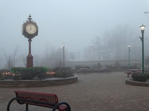 Lights and fog at the Utica clock park... Pure Michigan Unedited Photo The Purist (no Edit, No Filter) EyeEm Best Shots - Nature EyeEm Nature Lover Nature Photography Foggy Morning Frosty Mornings Showcase: December EyeEm Masterclass