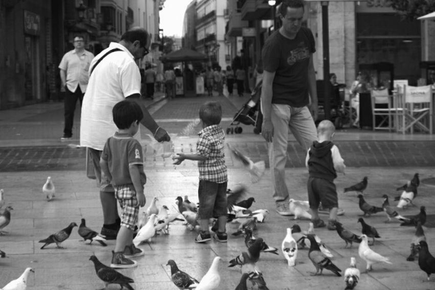 Feeding🐦 Kids Peigons Food People Black And White Photography Contrast Monochrome Beauty Shooting Time Pentax K-50 Photooftheday Writing With Light