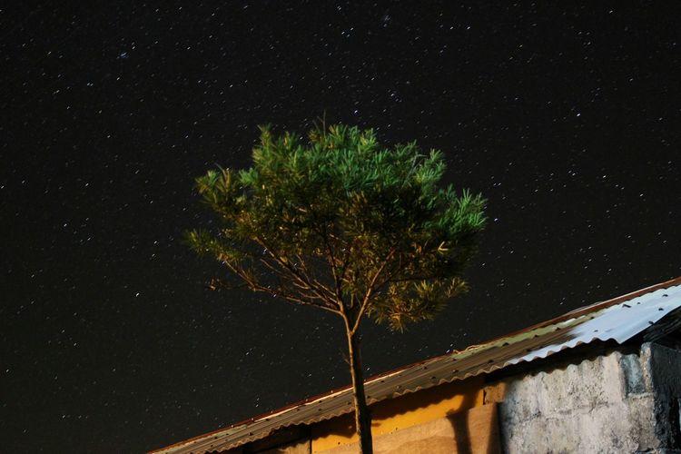 修学旅行 沖縄 伊是名島 Japan 星座観察 星 Star