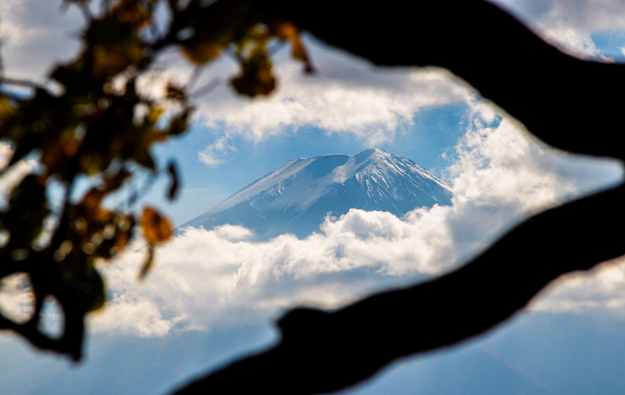 Mt fuji seen from between the branches
