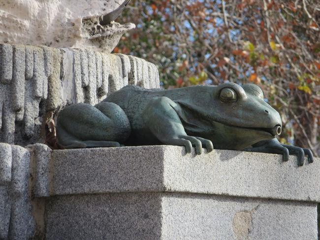 Frog Statue Nature Outdoors Madrid Fountain Detail