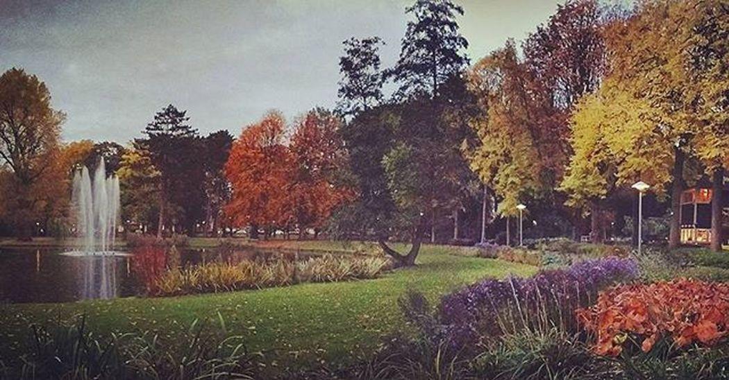 Decent view to cycle past in Utrecht Fall Autumn Utrecht Wilhelminapark Holland Nederland Netherlands Studyabroad
