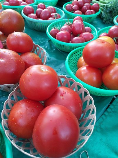 High angle view of tomatoes in basket