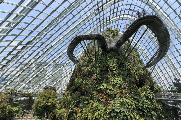 Singapore, Singapore - October 16, 2018: Inside the Cloud Forest Dome Gardens by the Bay in Singapore. On foreground the Marina Bay Sands hotel Singapore Cloud Forest Dome Flower Dome Gardens By The Bay Marina Bay Sands ASIA Waterfall Greenhouse Smart City Green Environment Conservation Exotic Flora Fern Plant Grass SuperTree Supertree Grove