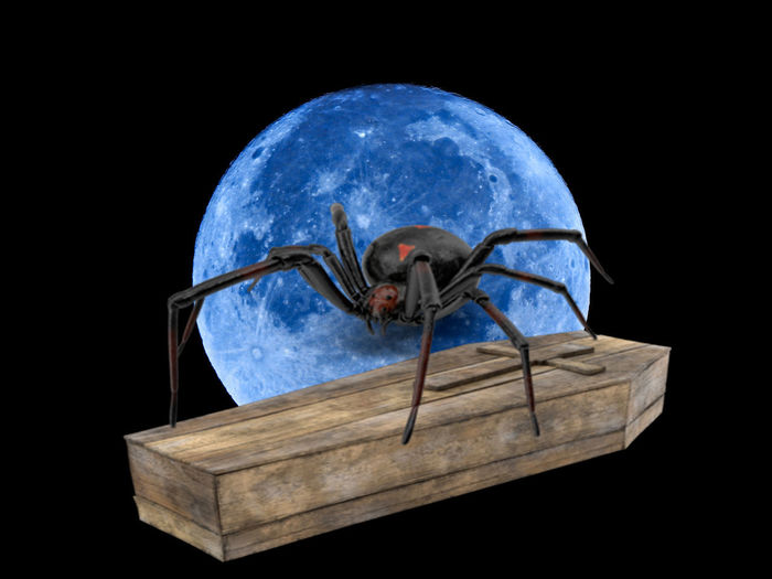 Animal Animal Themes Black Background Blue Box Container Digital Composite Globe - Man Made Object Indoors  Nature Night No People One Animal Planet - Space Planet Earth Sky Space Sphere Studio Shot Wood - Material