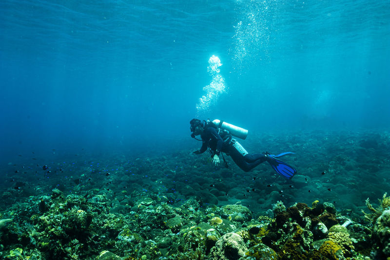 Scuba diver exploring underwater in sea