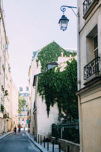 Paris street. Paris, France. Architecture Building Exterior Built Structure City City City Life City Life Clear Sky Day Diminishing Perspective France Green Color Hedge Narrow Outdoors Paris Paris, France  Residential Building Residential Structure Sky Street Street Light The Way Forward Travel Tree