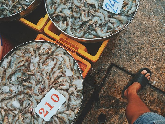 High angle view of seafood for sale at market