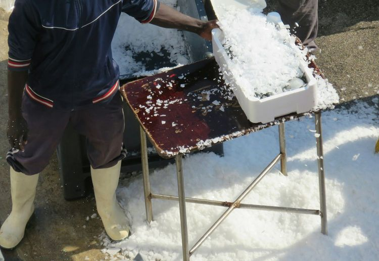 High angle view of fisherman covering fish with ice by machine at harbor