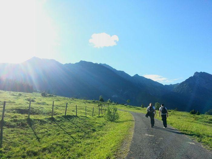 Allgäu Allgäuer Alpen Allgäu Alps Hiking_walking Alpen Beautiful Day Two People Mountain Togetherness People Walking Sunlight Adult