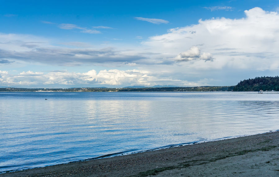 Clouds and sea landscape. Beach Beauty In Nature Blue Cloud - Sky Dash Point Day Idyllic Land Landscape Nature No People Non-urban Scene Outdoors Scenics - Nature Sea Sky Tranquil Scene Tranquility Tree Water