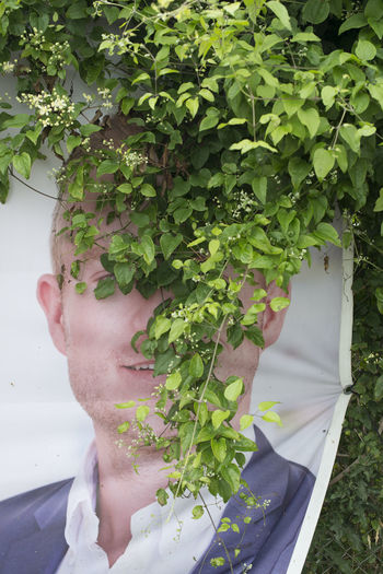 Close-up of man holding plants
