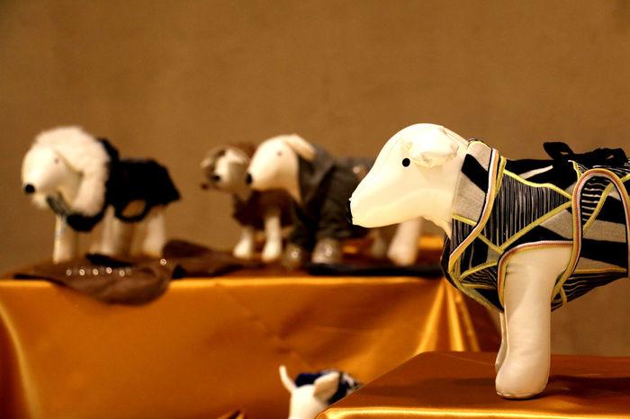 Anthropomorphic Face Cane Close-up Day Dog Ex Mattatoio Indoors  Museo No People Testaccio