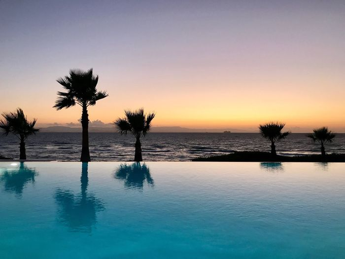 Silhouette palm tree by swimming pool against sky during sunset