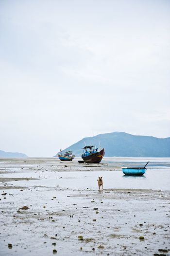 Con Dao Island, Vietnam during our trip in 2012. Traveling Travel Photography EyeEm Gallery Zerofotografie.nl OpenEdit Beach Boats Taking Photos Eye4photography