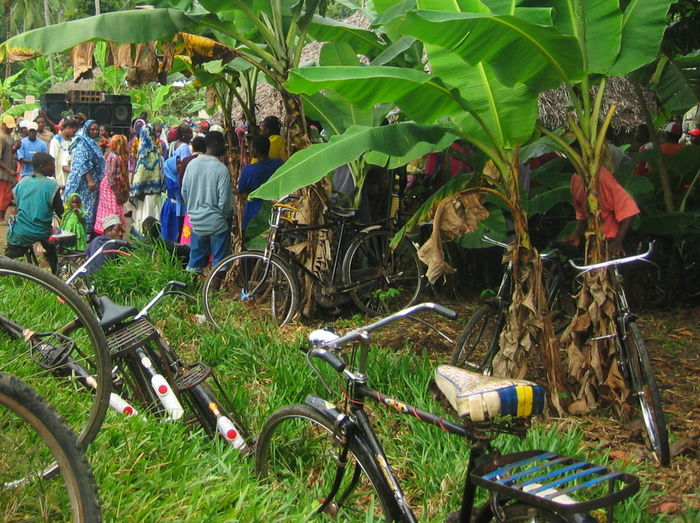 2006 Bicycle Day Feast In The Jungle Large Group Of People Men Mode Of Transport Nature Real People Women Zanzibar