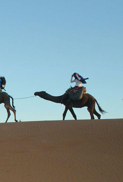 Sand Dune Desert Sand Full Length Motion Competition Beach Sport Sky Camel