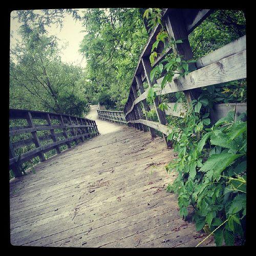Path Work Walkdontrun