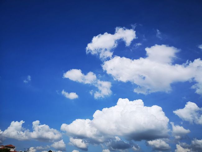 Blue Flying Summer Cloudscape Sky Cloud - Sky