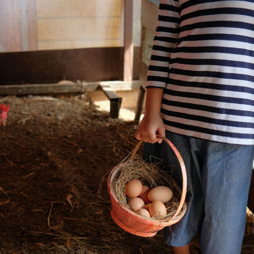 Midsection  Of Girl Holding Basket With Eggs While Standing In Pen