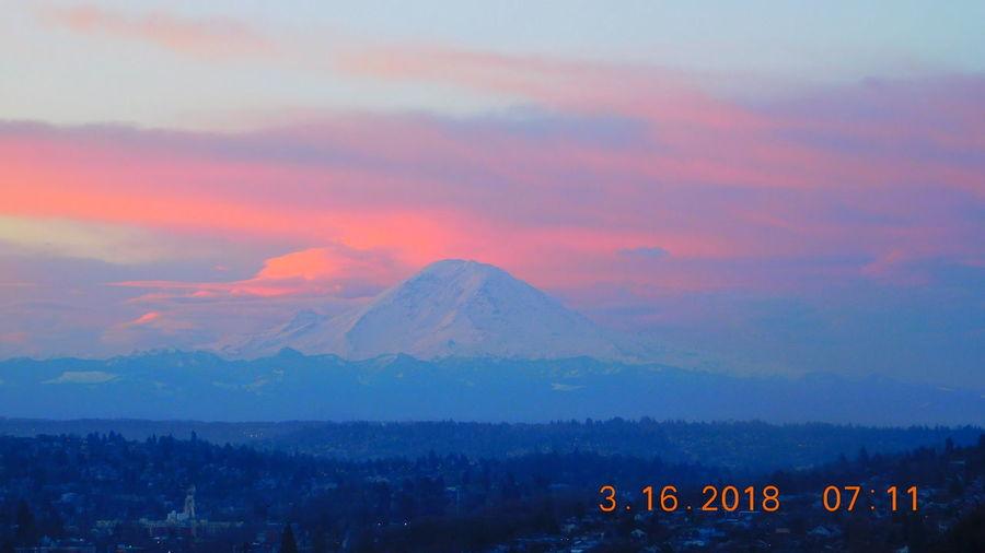 Mt Rainier Wa Sunrise Seattle Sunrise Seattle, Washington Seattle Skyline Mt Rainier Sunrise_sunsets_aroundworld No People Flamingo Tree Sunset City Mountain Pastel Colored Fog Dramatic Sky