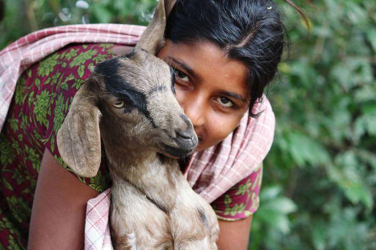 Goat Goat Life