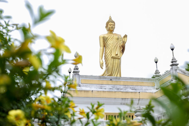 Wat Pikulthong Standing Buddha in Tumpat, Kelantan Budhism Budhist Temple Buddhist Temple Sculpture Representation Spirituality Human Representation Religion Statue Belief Art And Craft Male Likeness Gold Colored Low Angle View Architecture Creativity Place Of Worship Built Structure No People Plant Nature Idol