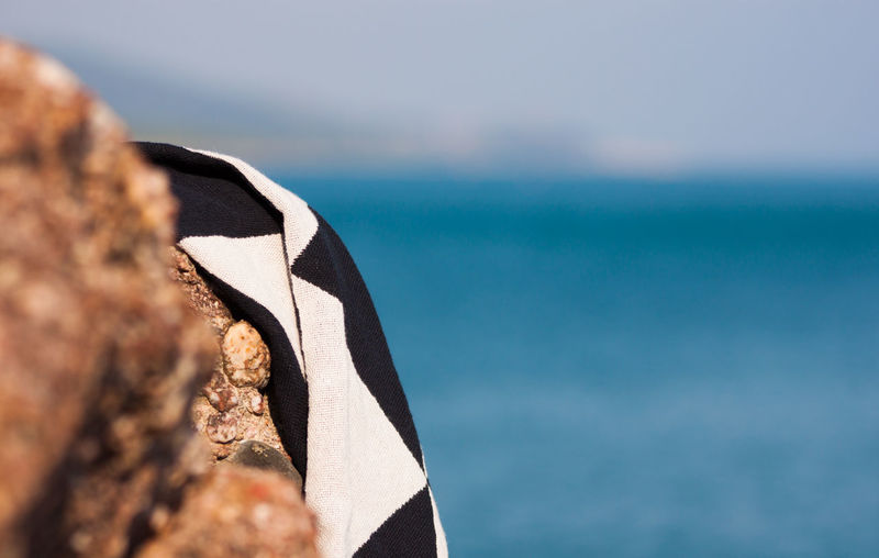 The cloth, the rock and the sea Sea Water Nature No People Horizon Over Water Day Animal Animal Wildlife Beauty In Nature Close-up Animal Themes Sky Horizon Land Rock Outdoors Rock - Object Solid Focus On Foreground Tuscany Tuscany Italy Tuscany Landscape