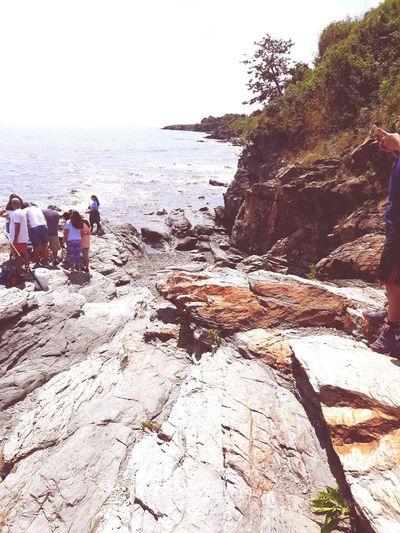 Newport Cliff