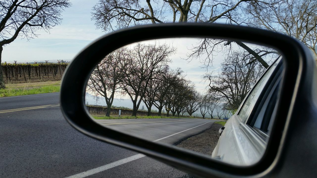 side-view mirror, glass - material, car, tree, transportation, mirror, road, reflection, land vehicle, window, mode of transport, vehicle mirror, no people, road trip, car interior, day, bare tree, nature, vehicle part, sky, outdoors, close-up