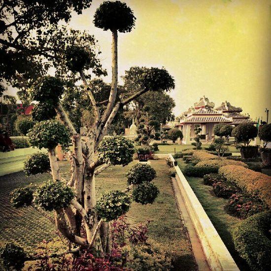 The Serene Gardens of Wat Arun bangkok Thailand