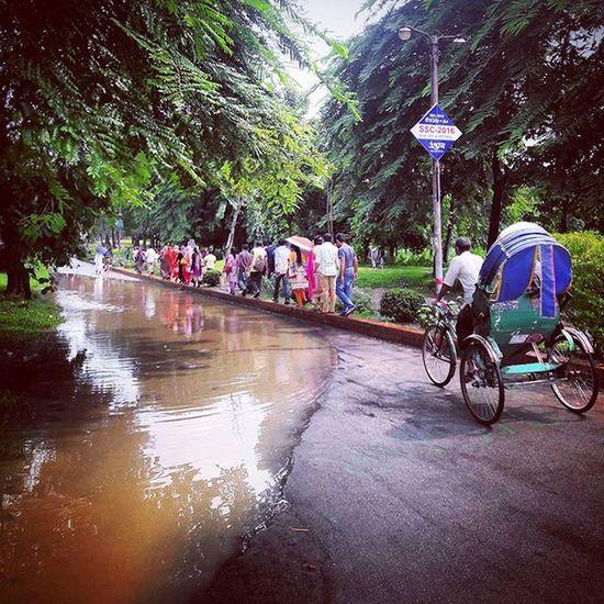 Ju Afterrain Rain Students Waterlogged